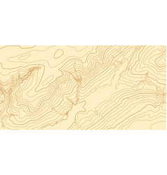 abstract topographic map in brown colors vector image