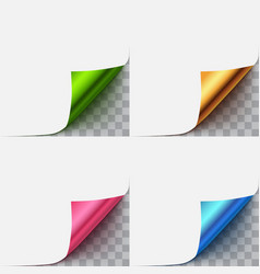 paper with curl corner vector image