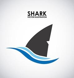 shark design vector image