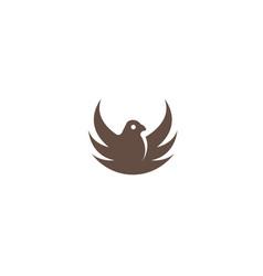 bird eagle open wings flying logo vector image