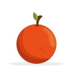 Jflatcy orange nutrition health vector
