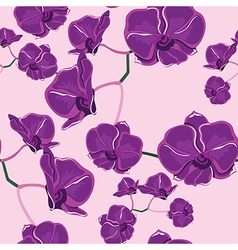 Seamless pattern with orchids hand-drawing vector image