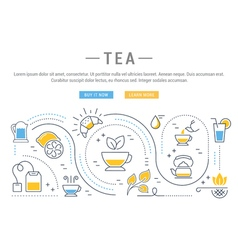 Tea Web Banner vector image