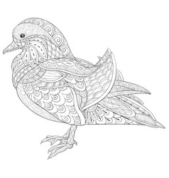 adult coloring bookpage a cute duck image vector image