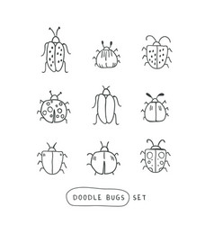big line hand drawn doodle set - insects bugs vector image