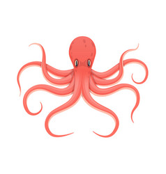 Colorful red octopus an animal in a water fauna vector