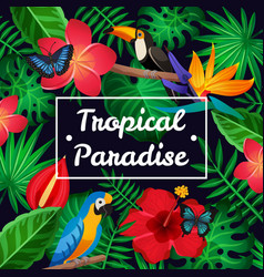 Flat tropical frame vector
