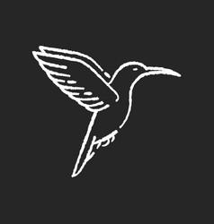 hummingbird chalk white icon on black background vector image