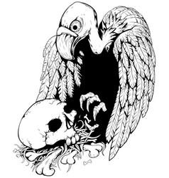 Skull vulture vector