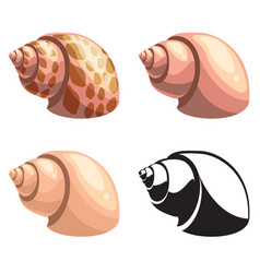 set of shells vector image