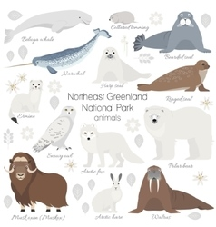 Arctic animal set White polar bear narwhal vector