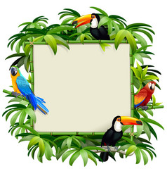 bamboo frame with tropical birds vector image