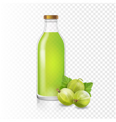 isolated gooseberry juice in glass bottle vector image