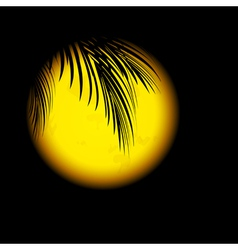 Tropic Night vector image