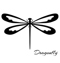 Black and white dragonfly vector image