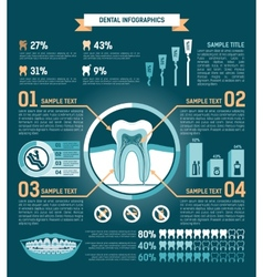 tooth Infographic vector image