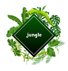 Background with jungle plants vector