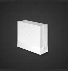 blank paper bag mockup vector image