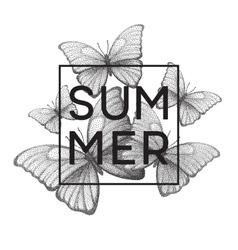 butterflies summer stipple vector image