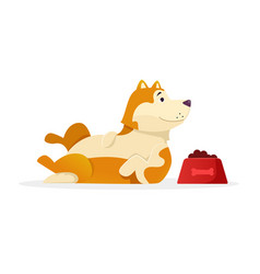funny dog with dog food lying flat vector image