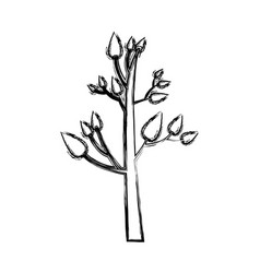 Monochrome sketch of tree with leafs vector