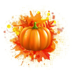 Orange With Blobs Autumn Leafs And Pumpkin vector image