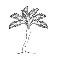 Palm beach treesummer rest single icon in outline vector