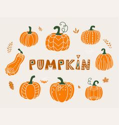 pumpkin in flat naive simple vector image