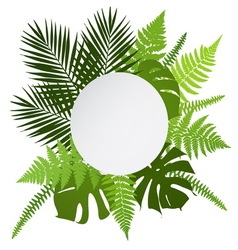 Tropical leaves background with white round banner vector image