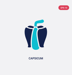two color capsicum icon from agriculture farming vector image