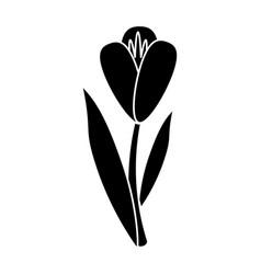flower flora fragant garden pictogram vector image vector image