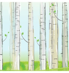 Aspen forest background vector