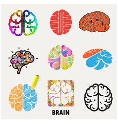 Collection of brain vector