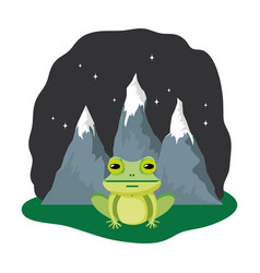 Cute toad in the landscape on the night vector
