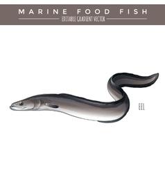 Eel Marine Food Fish vector