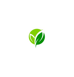 green leaf organic eco logo vector image