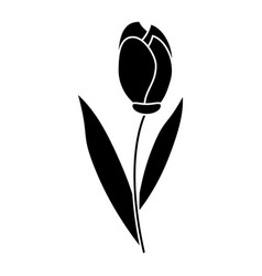 tulip leaf natural floral pictogram vector image