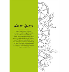Hand drawn design template with lime vector