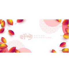 autumn leaves background seasonal lettering vector image
