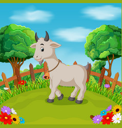 cartoon happy goat smile in the farm vector image