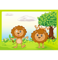 Dancing lions vector