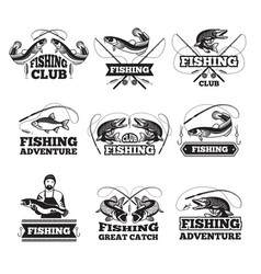 fishing club badges or labels design template vector image