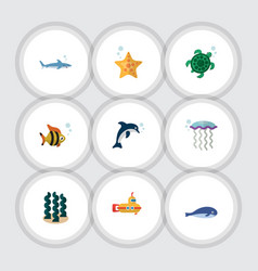 Flat icon marine set of alga medusa sea star and vector