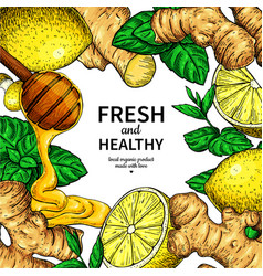 Honey ginger lemon and mint frame drawing vector