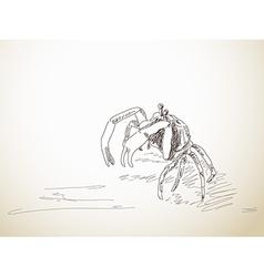 sketch crab vector image