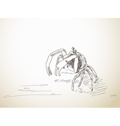 Sketch of crab vector
