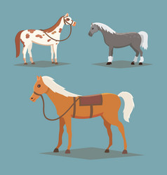 Collection of isolated horses cute cartoon horse vector