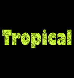 tropical text with palm leaves inscription vector image