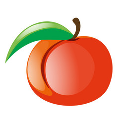 fresh peach on white background vector image