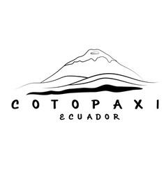 abstract of volcano Cotopaxi in Ecuador vector image